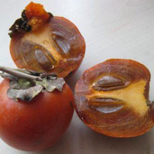 Королёк шоколадный спелый