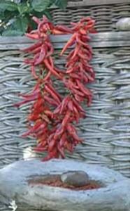 Сушеные красные стручковые перцы на нитке
