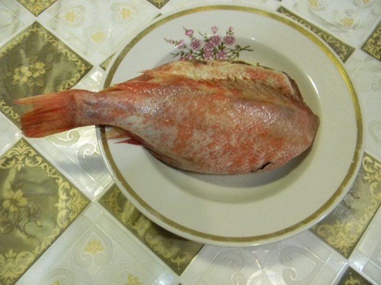 Красный окунь рецепты жареный на сковороде